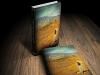 Владимир Познер о «Девушке песчаного замка» Криса Бохджаляна: Это книга-открытие