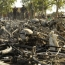 Two bombs kill 44 in Nigeria's central city