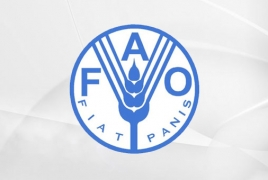 Россия через FAO предоставит $6 млн на развитие сельхозсферы Армении, Кыргызстана и Таджикистана