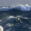 NASA: sea levels worldwide rose 8cm since 1992