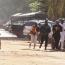 ՀՀ ԱԳՆ-ն խստորեն դատապարտել է Մալիի  ահաբեկչությունը