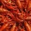 Armenia may start shrimp production