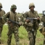 Nigerian troops killed hundreds of Shiite Muslims: activists