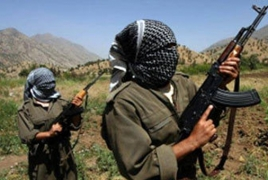 Eight Kurdish rebels killed in clashes with Turkey's military