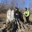 «Դիլիջան» ազգային պարկն անտառխախտման 9 դեպք է հայտնաբերել  2 ամսում