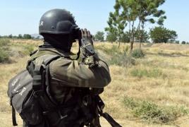 Cameroon troops kill 27 Boko Haram militants