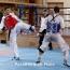 Армения завоевала серебро и бронзу на чемпионате Европы по тхэквондо