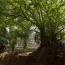Археологи обнаружили в джунглях Камбоджи затерянные средневековые города