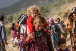 Езиды призвали мировое сообщество признать геноцид своего этноса со стороны ИГ