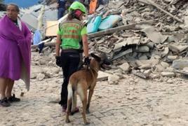 В итальянском городе Аматриче жертвами землетрясения стали пять человек