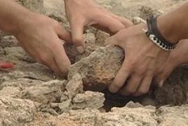 Аргентинские ученые обнаружили останки птерозавра возрастом 170 млн лет