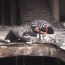 При теракте у торгового центра в Багдаде погибли 40 человек