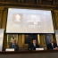 Work on contracts wins Nobel Prize in Economics