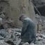 "Armenian disaster film ""Earthquake"" sells to multiple territories"