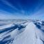 Ученые нашли жука возрастом более 14 млн лет на территории Антарктиды