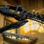 Dinosaur skeleton auctioned for over €1 million in France