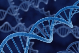 Scientists design more effective version of CRISPR for gene editing