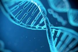 «Հայու գեն». Գիտական փա՞ստ, թե՝ առասպել