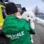 Три щенка спасены из-под снежных завалов в центральной Италии