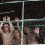 """A24 nabs Muay Thai champion pic """"A Prayer Before Dawn"""""""