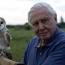 "David Attenborough to narrate BBC's ""Blue Planet II"""
