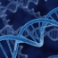 """DNA """"computers"""" could lead to self-activated smart pills"""
