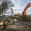 В Ирландии ураган повредил знаменитое 200-летнее дерево из «Игры престолов»