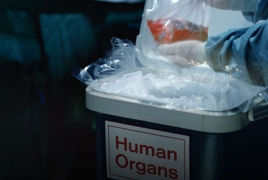 Researches taking 1st step to help preserved organs survive deep freeze