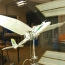 Researchers build a drone that swoops and lands like a bird