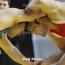 Մարզիչ․ Ըմբշամարտի ՀՀ առաջնության արդյունքներով կձևավորվի երիտասարդական հավաքականը