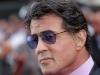 Sylvester Stallone hails