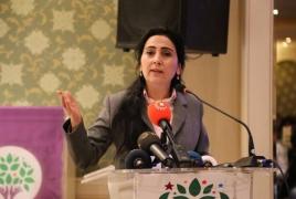 Թուրքիայի քրդամետ կուսակցության համանախագահն ազատազրկվել է