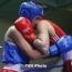 Մարզիչ.  Բռնցքամարտի հավաքականը պատրաստվում է  Եվրոպայի առաջնությանը