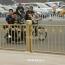В Китае запретили давать детям мусульманские имена