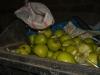 ГСБПП Армении не гарантируетбезопасность попавших в страну азербайджанских яблок