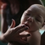 Brazil says Zika virus emergency over