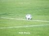 Չեռնոգորիա-Հայաստան խաղին ևս 7 ֆուտբոլիստ է հավաքական հրավիրվել