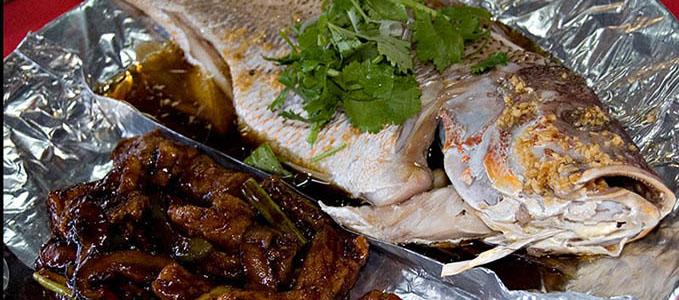 Live food panarmenian net for Live fish food