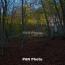 Անտառներում հրդեհների վտանգը մեծացել է. Մի շարք արգելանքներ են գործում