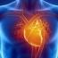 Ученые создали маленькое человеческое сердце на месте крысиного