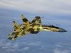 ՌԴ-ն կփոխանակի կործանիչներն արմավի յուղի հետ