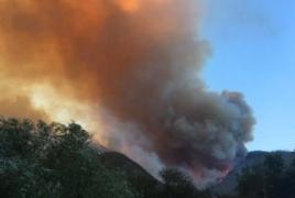 Armenian firemen arrive in Georgia to help extinguish Borjomi wildfire