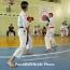 17 Armenian karatekas readying for World Championships