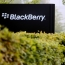 BlackBerry coming back with an all-touchscreen Motion