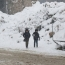 Israel says 5 Syrian army projectiles hit Golan Heights