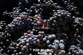 Mobile 'Wine Cubes' could transform Armenia's enotourism: Smithsonian