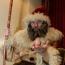 Армянский Каханд Папа - в топ-5 популярных Дедов Морозов в странах СНГ у российских туристов