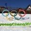 Армянская пара фигуристов может принять участие в Олимпиаде 2018 года