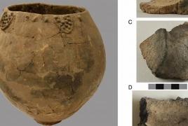 Վրացական գինին հայտնվել է Գինեսի գրքում՝ որպես հնագույնն աշխարհում
