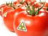 В Армении хотят запретить ГМО